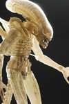 Alien Translucent Prototype Suit Concept 1/4 Scale Figure