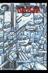Teenage Mutant Ninja Turtles Ultimate Coll HC Vol. 06