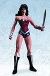 Justice League Wonder Woman Action Figure