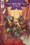 Teenage Mutant Ninja Turtles Dimension X #1 (Cover B - Tunica)