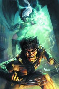 FF #8 (Wolverine Variant Cover Edition)