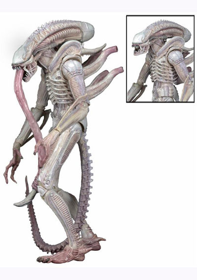 Aliens Series 9 Action Figure: Albino Alien 51611-ALBINO