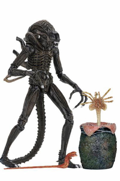 Aliens Ultimate Aliens Warrior (1986) 7-Inch Action Figure - Brown Version 51644-BROWN