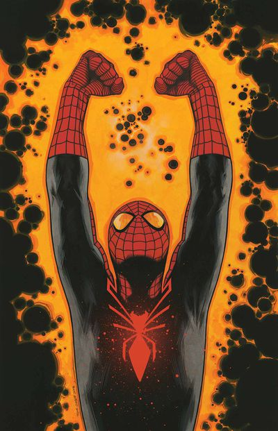 Opinion superior spider man remarkable, rather