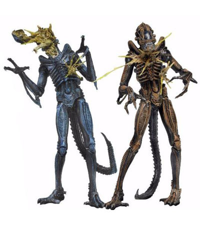 Aliens Series 12 7-Inch Action Figure - Battle Damaged Xenomorph Warrior (Brown) NECA-51636BROWN